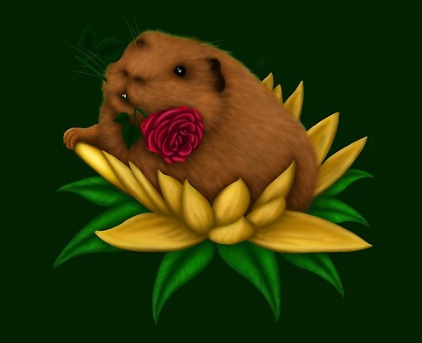 Cavy in Bloom